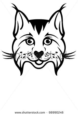 Bobcat clipart face. Clip art google search