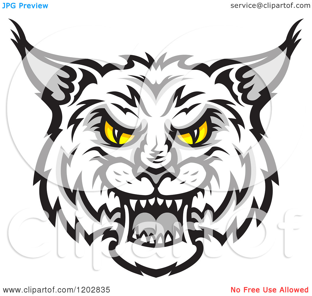 . Bobcat clipart face