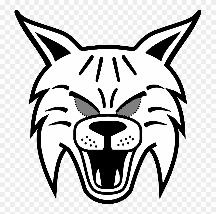 Image huge collection of. Bobcat clipart face