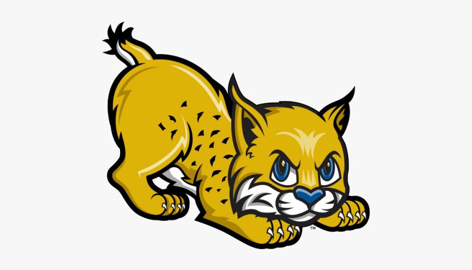 Bobcat clipart illustration. Free clip art stock