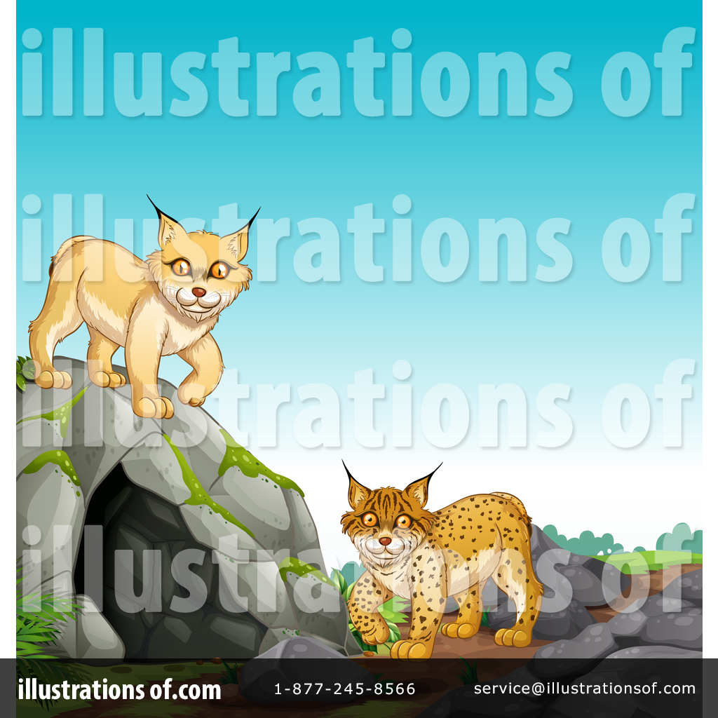 By graphics rf royaltyfree. Bobcat clipart illustration