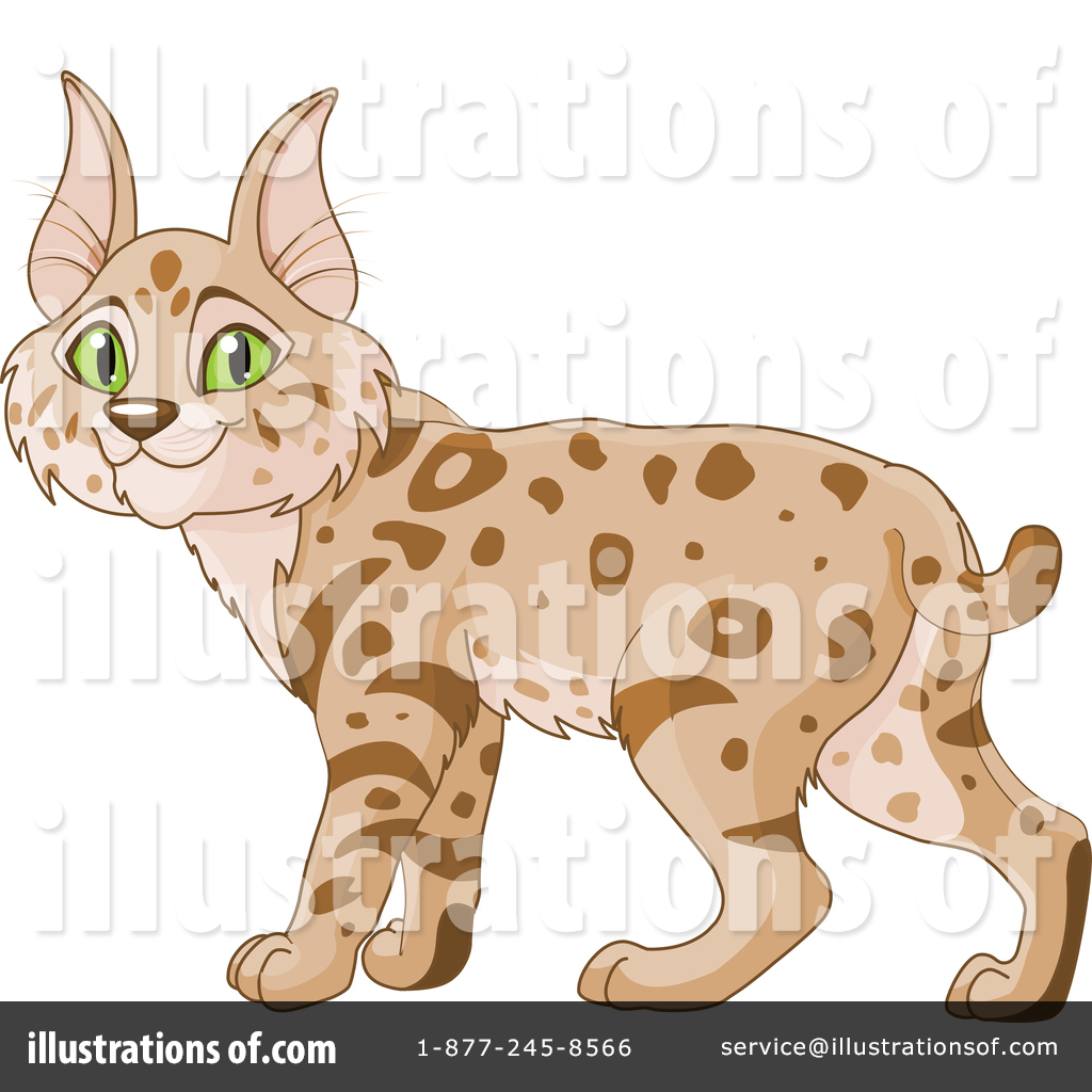 Bobcat clipart illustration. By pushkin