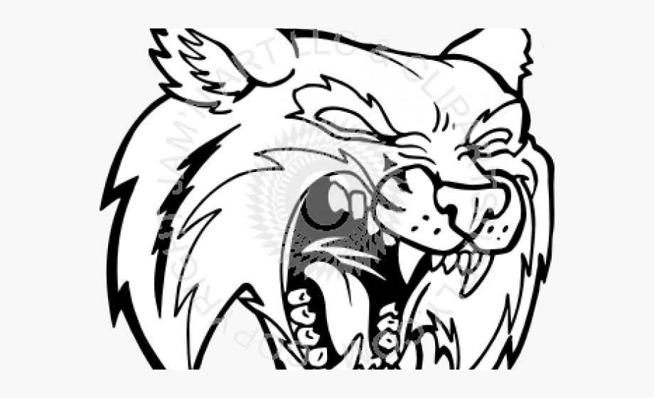 Angry cliparts cartoons jing. Bobcat clipart line