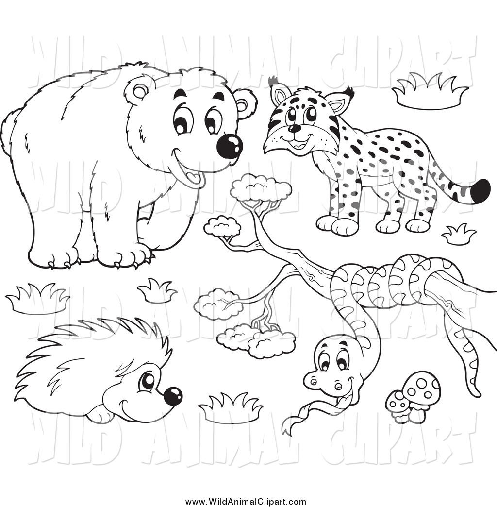 Bobcat clipart lineart. Royalty free line art
