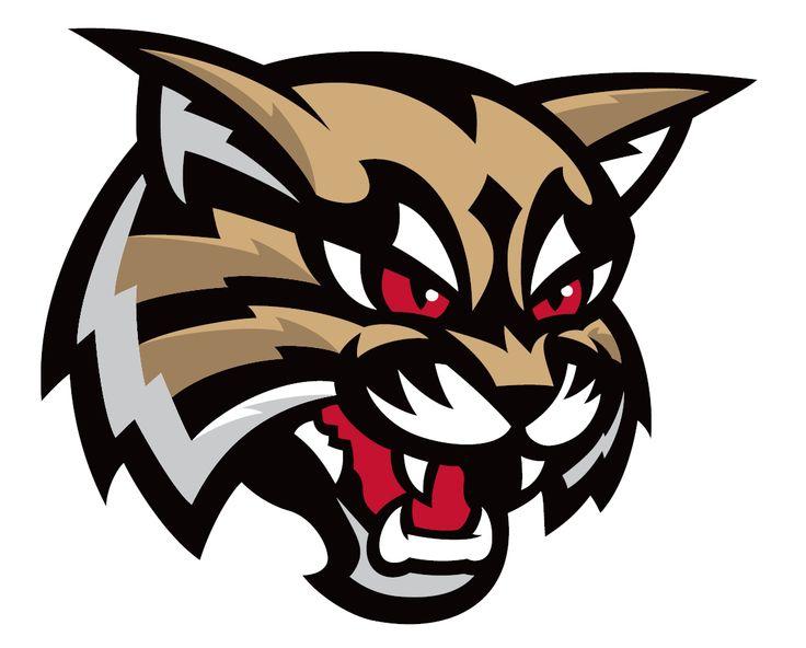Bobcat clipart lion.  best bobcats logos