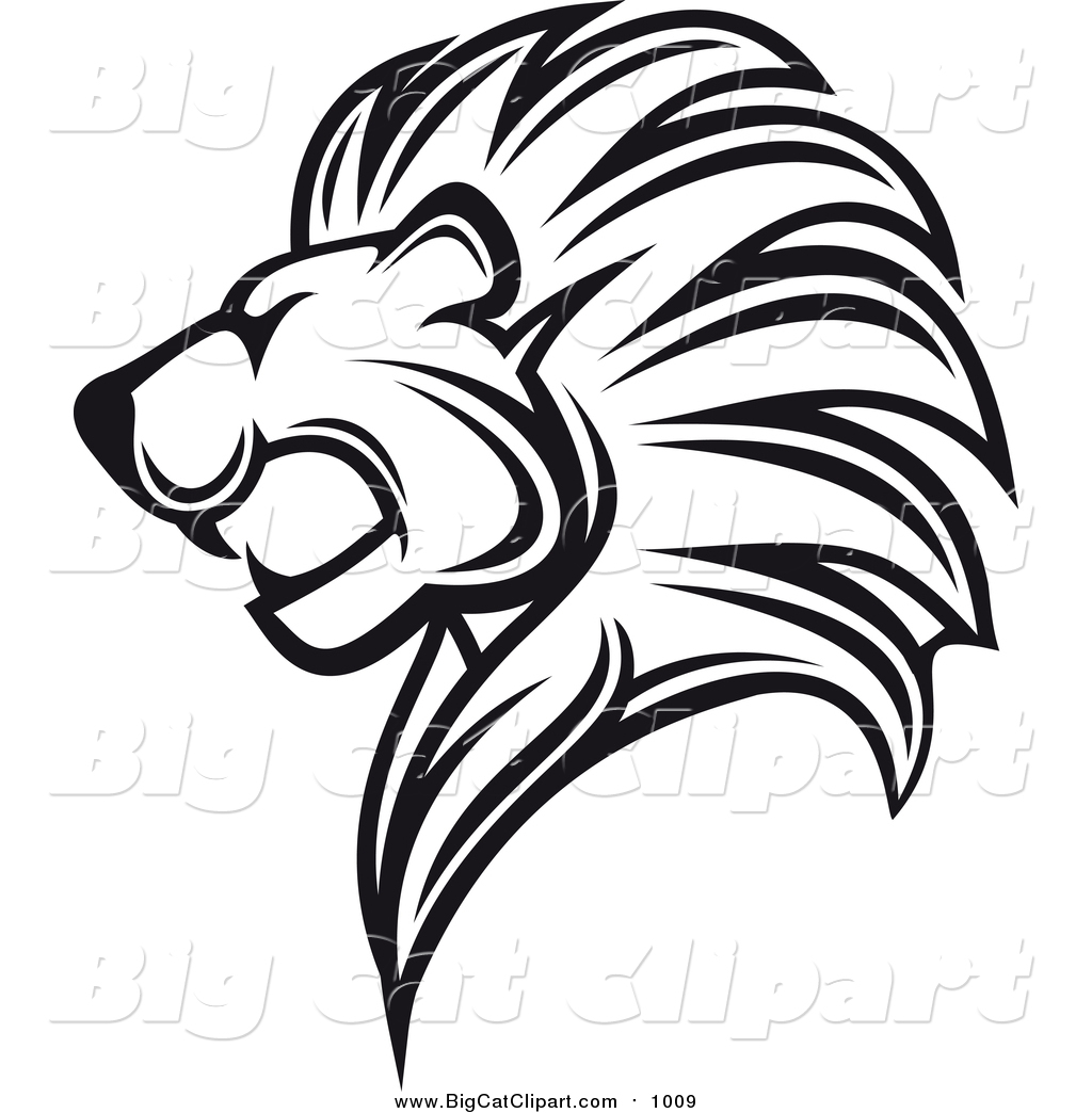 Pencil drawing at getdrawings. Bobcat clipart lion