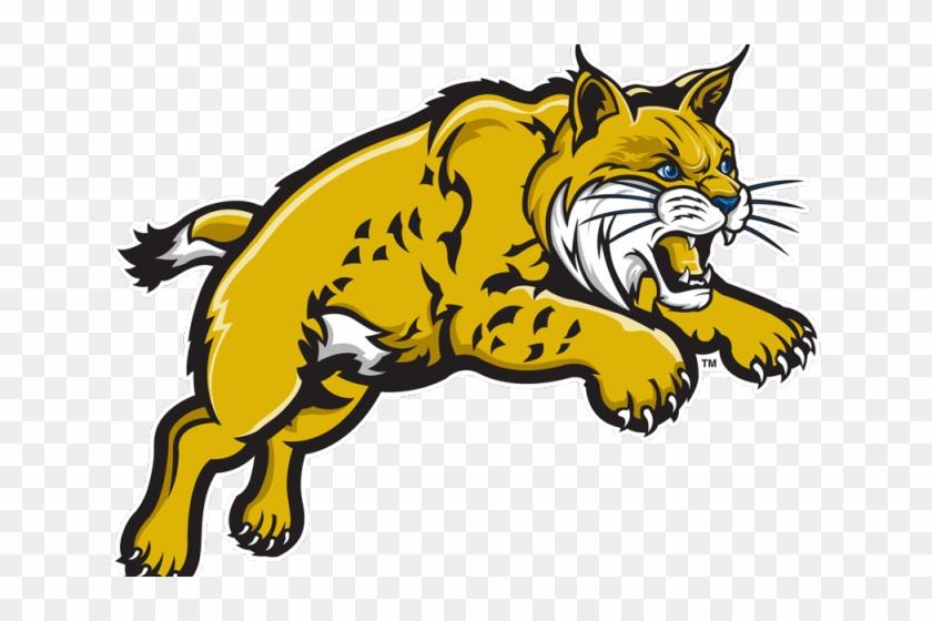 Bobcat clipart logo. Uc merced hd png