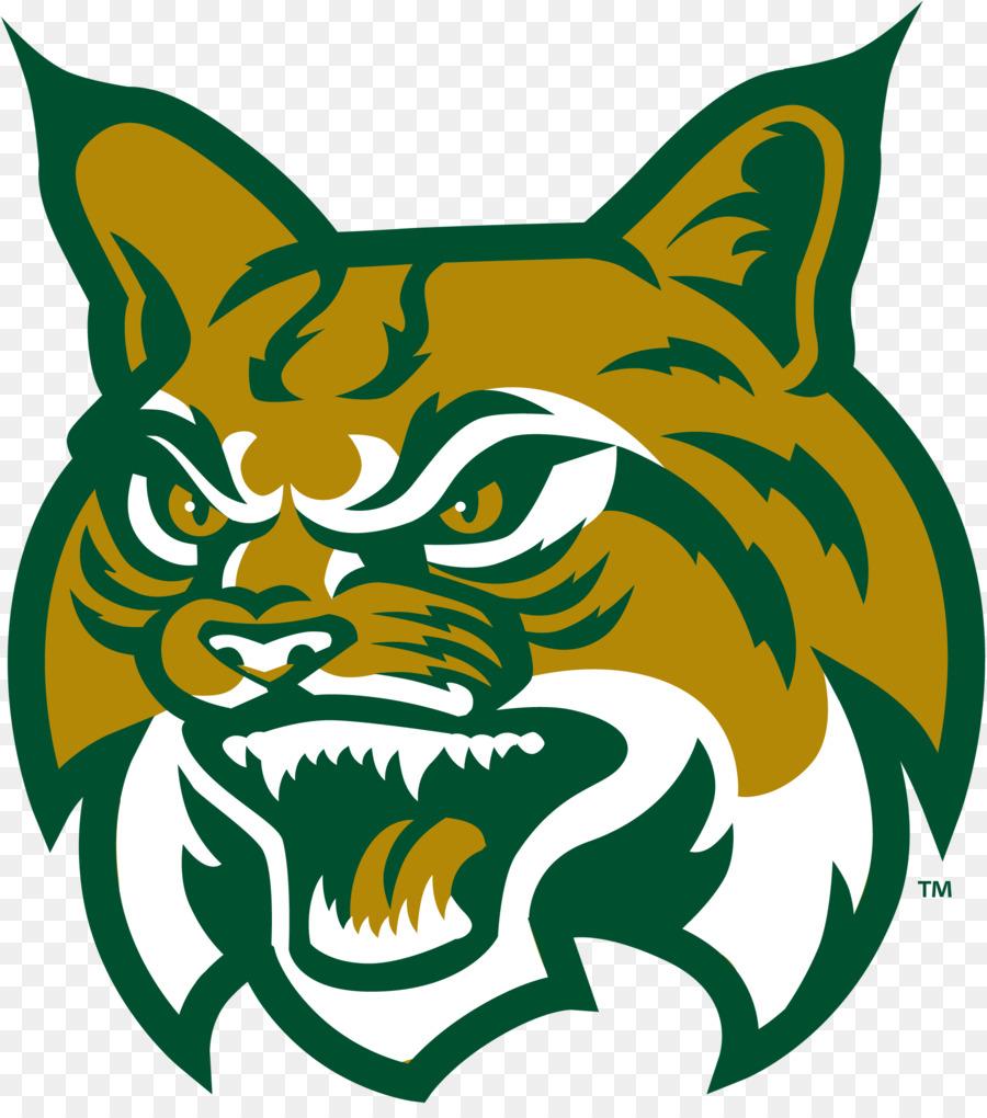 Cat drawing design green. Bobcat clipart logo