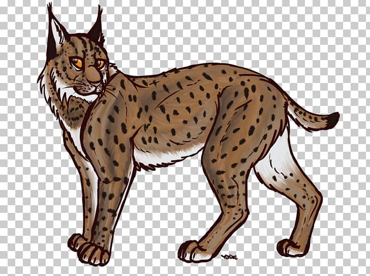 Bobcat clipart lynx. Eurasian felidae canada png