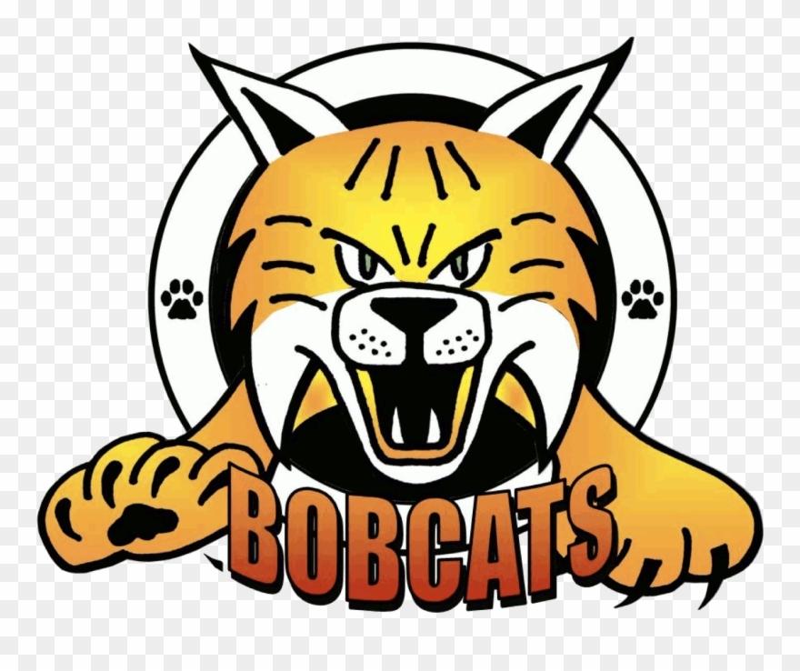 Related keywords long tail. Bobcat clipart mascot