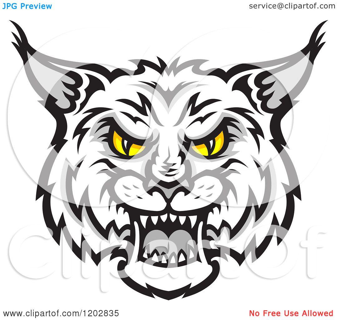 Bobcat clipart mascot. Interesting design ideas wildcat