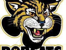Bobcats team design with. Bobcat clipart mascot