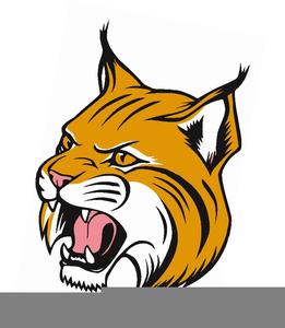 Mascots free images at. Bobcat clipart mascot