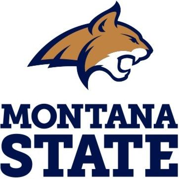 Bobcat clipart montana state university. Chris haslam cjhaz twitter