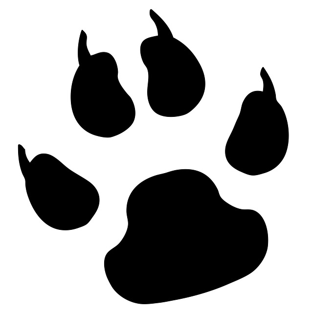 Paw clip art free. Bobcat clipart print
