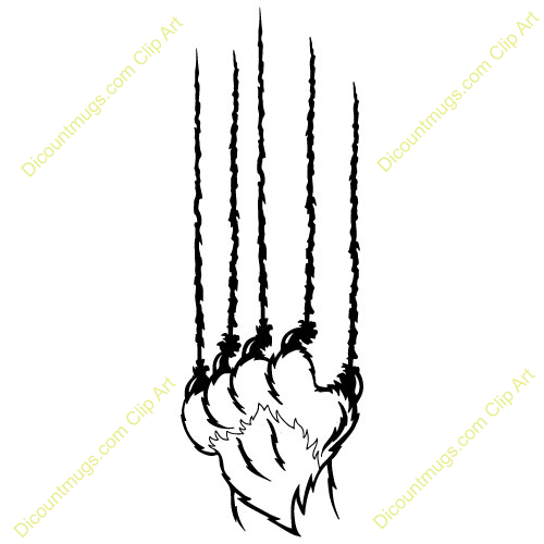 Claws pencil and in. Bobcat clipart scratch