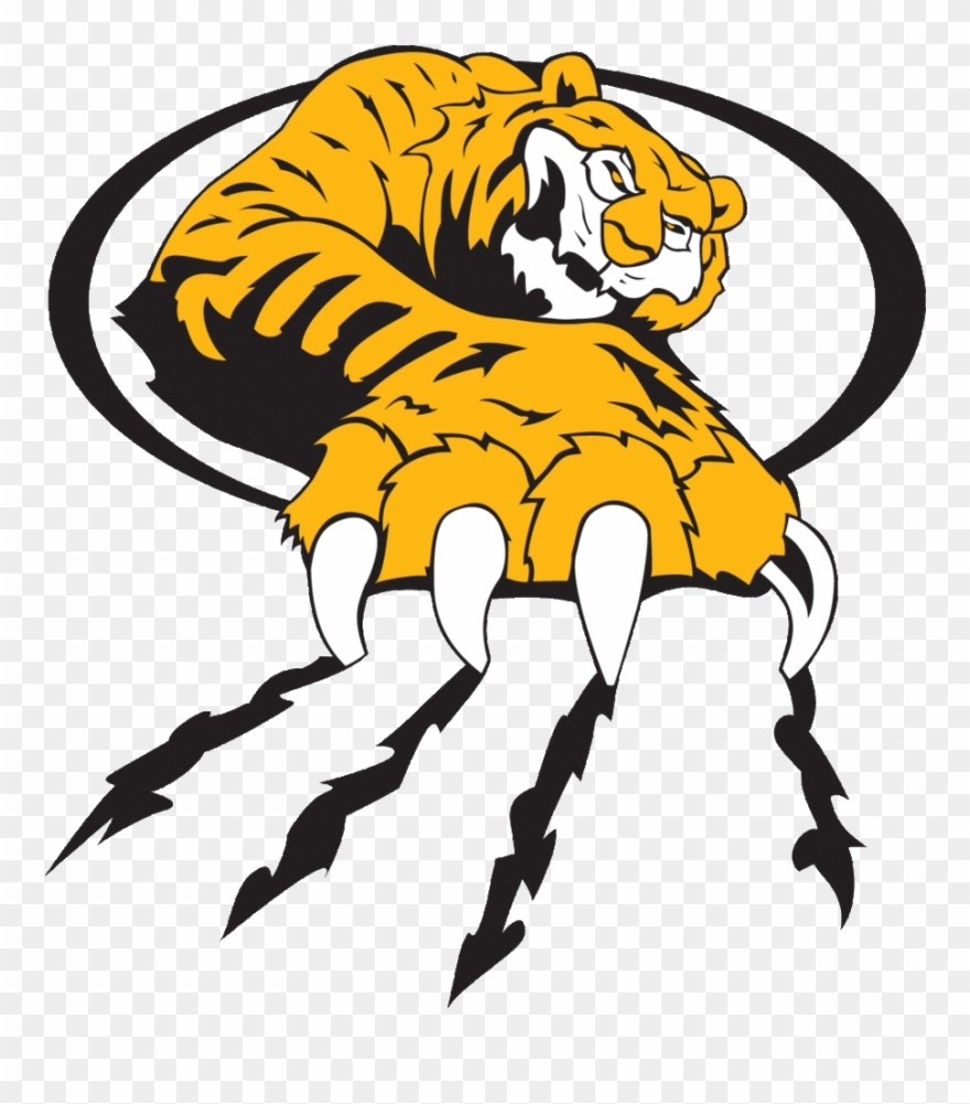 Tiger font clip art. Bobcat clipart scratch