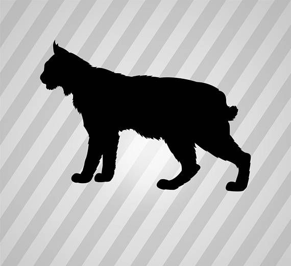 Svg dxf eps rld. Bobcat clipart silhouette