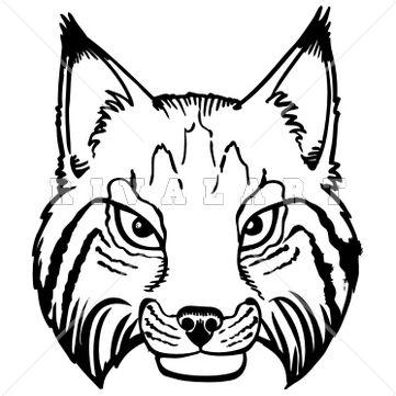 Bobcat clipart simple.  best bobcats images