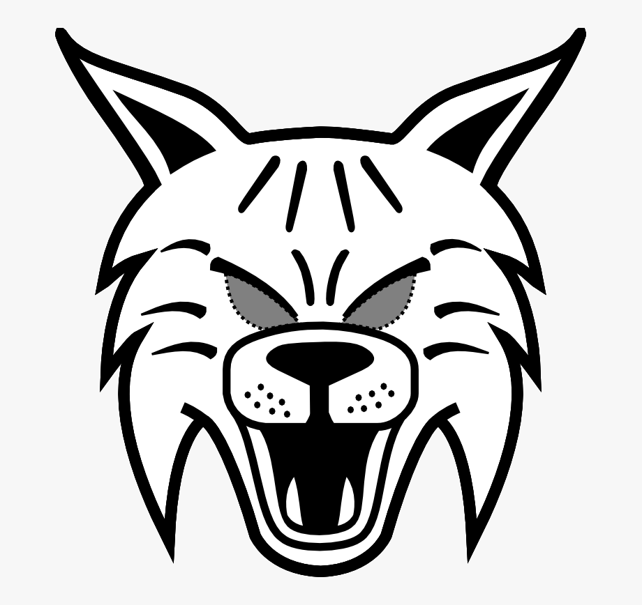 Easy drawing to draw. Bobcat clipart simple