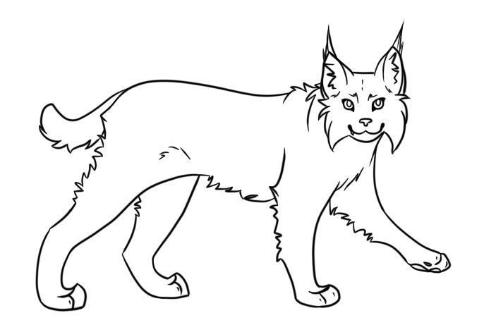 Bobcat clipart simple. Free cliparts download clip