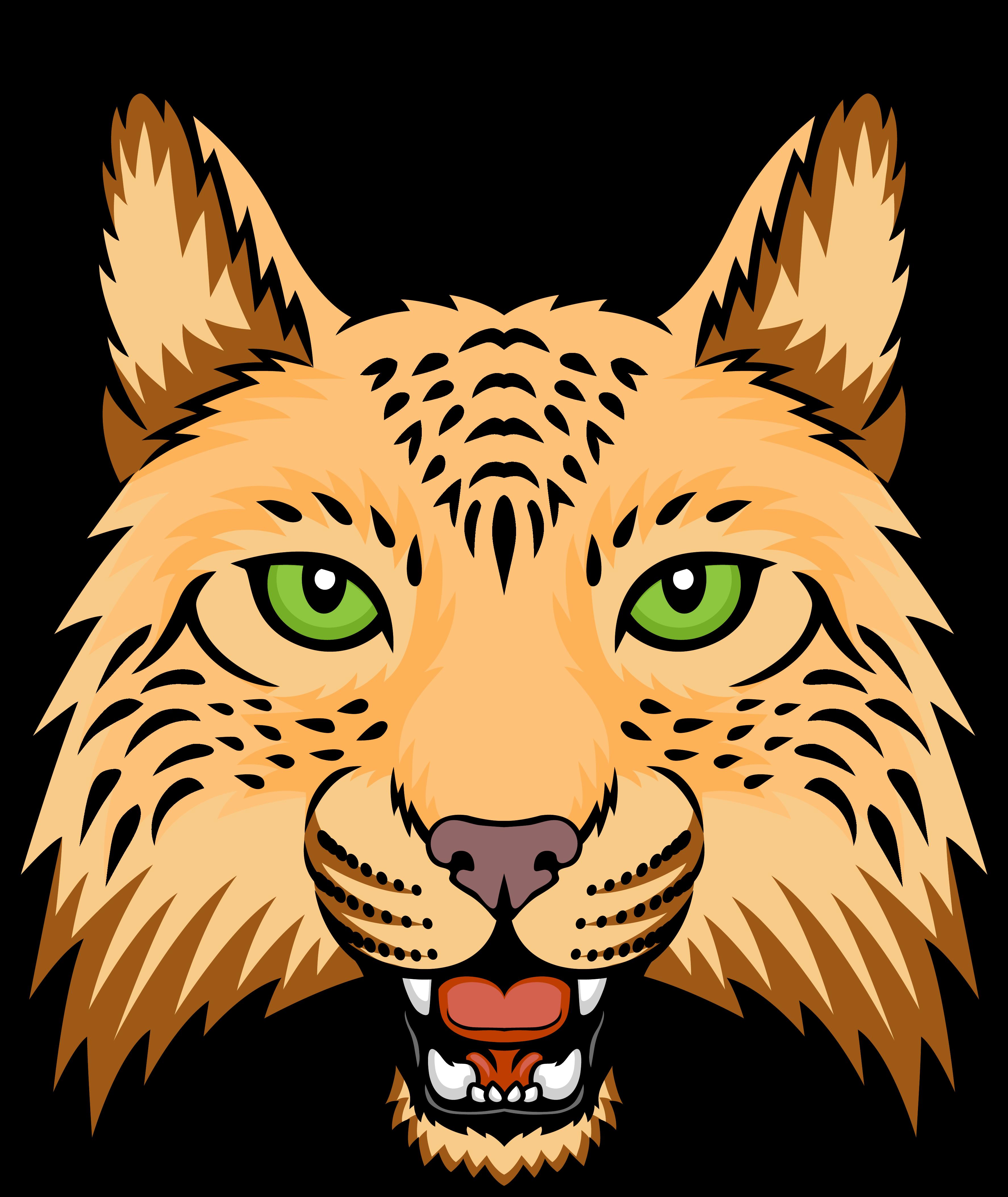 Banner free stock illustration. Bobcat clipart template