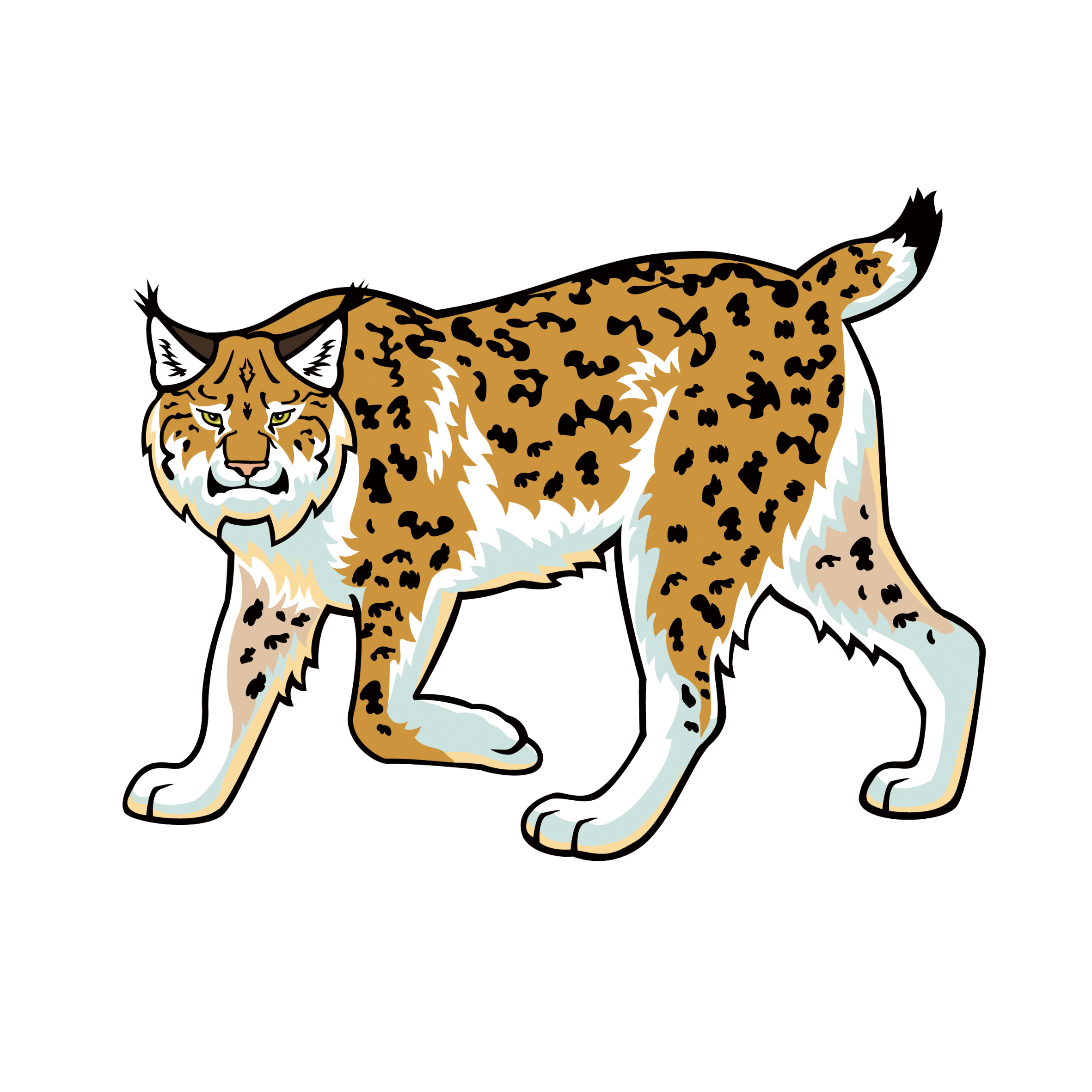 Bobcat clipart transparent. Heavy equipment clip art