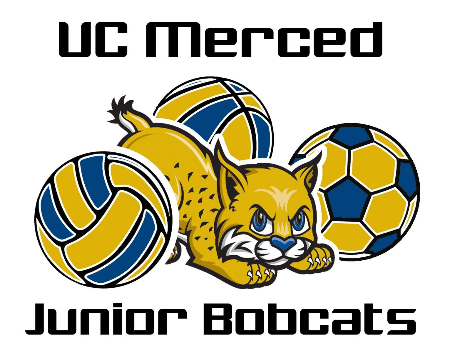 Bobcat clipart uc merced. University of california junior