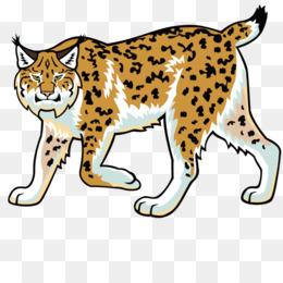 Bobcat clipart uc merced. University of california riverside