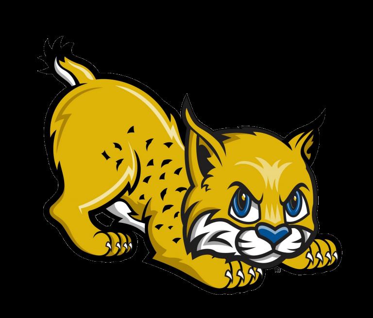 Bobcat clipart vector. Uc merced golden bobcats