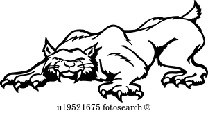 Collection of free download. Bobcat clipart vector