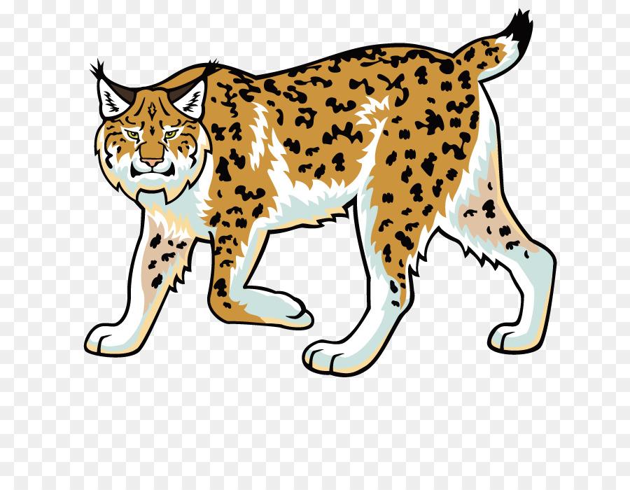Eurasian lynx felidae clip. Bobcat clipart wildcat