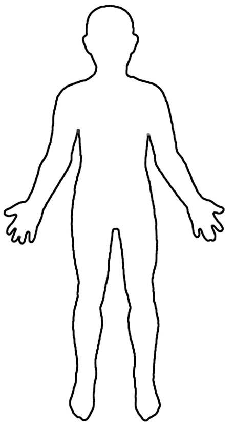 Outline human diagram incep. Body clipart