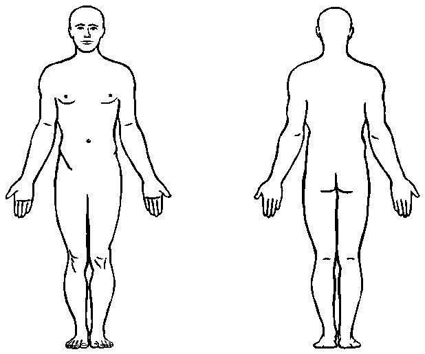Body clipart anatomy. Human outline printable for