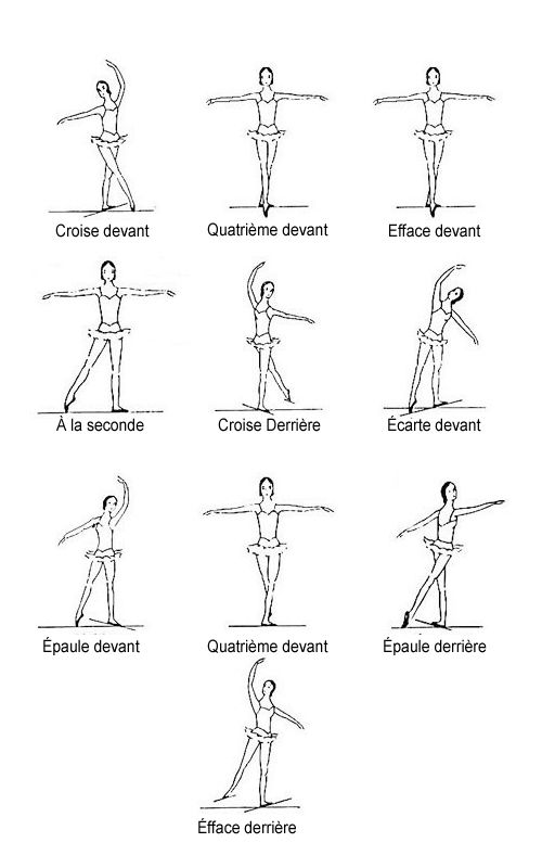 Positions of the as. Body clipart body position
