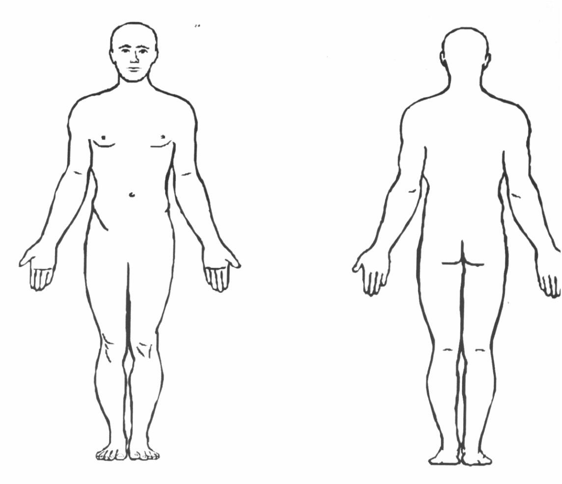 Sport science anatomy lessons. Body clipart body position