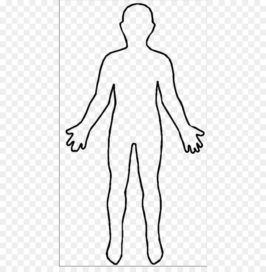 Human female homo sapiens. Body clipart body shape