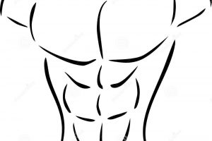 B download station page. Body clipart chest