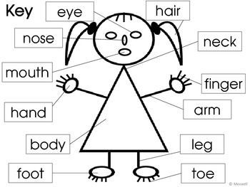 Awesome parts mary pinterest. Body clipart face