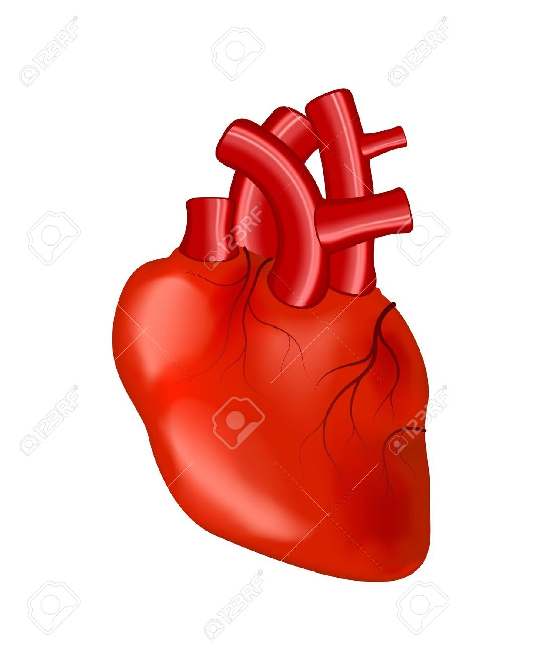 Real candelalive co uk. Body clipart heart