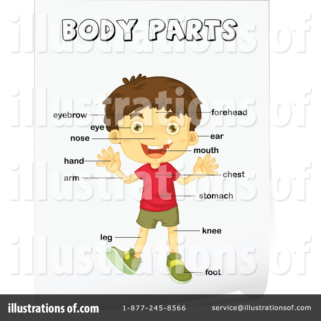Body clipart illustration. Parts by graphics rf