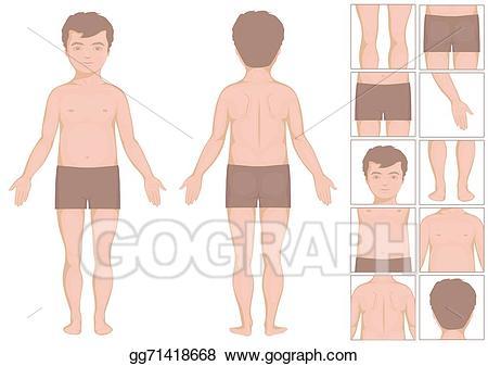 Vector stock baby boy. Body clipart illustration