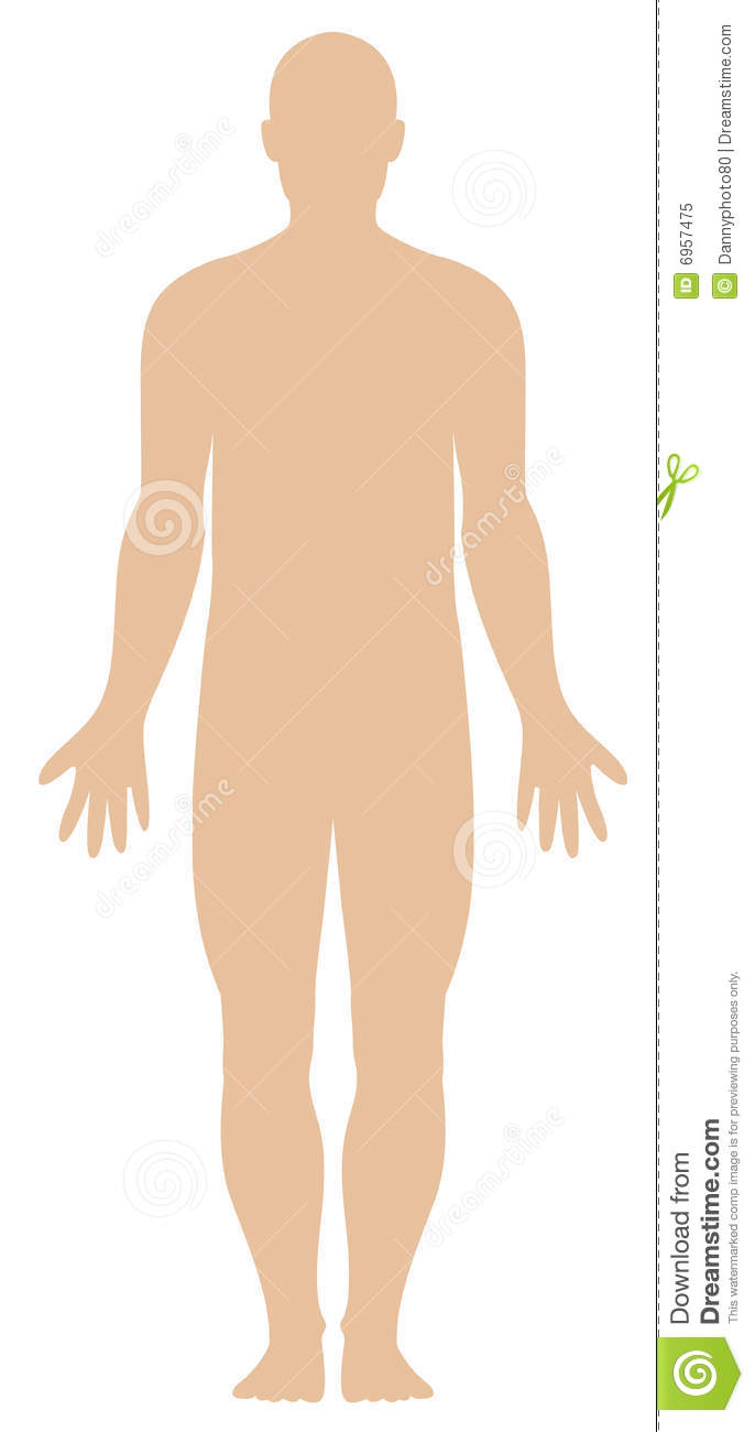 Generic human outline stock. Body clipart illustration
