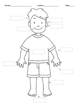 Pin on . Body clipart labelling