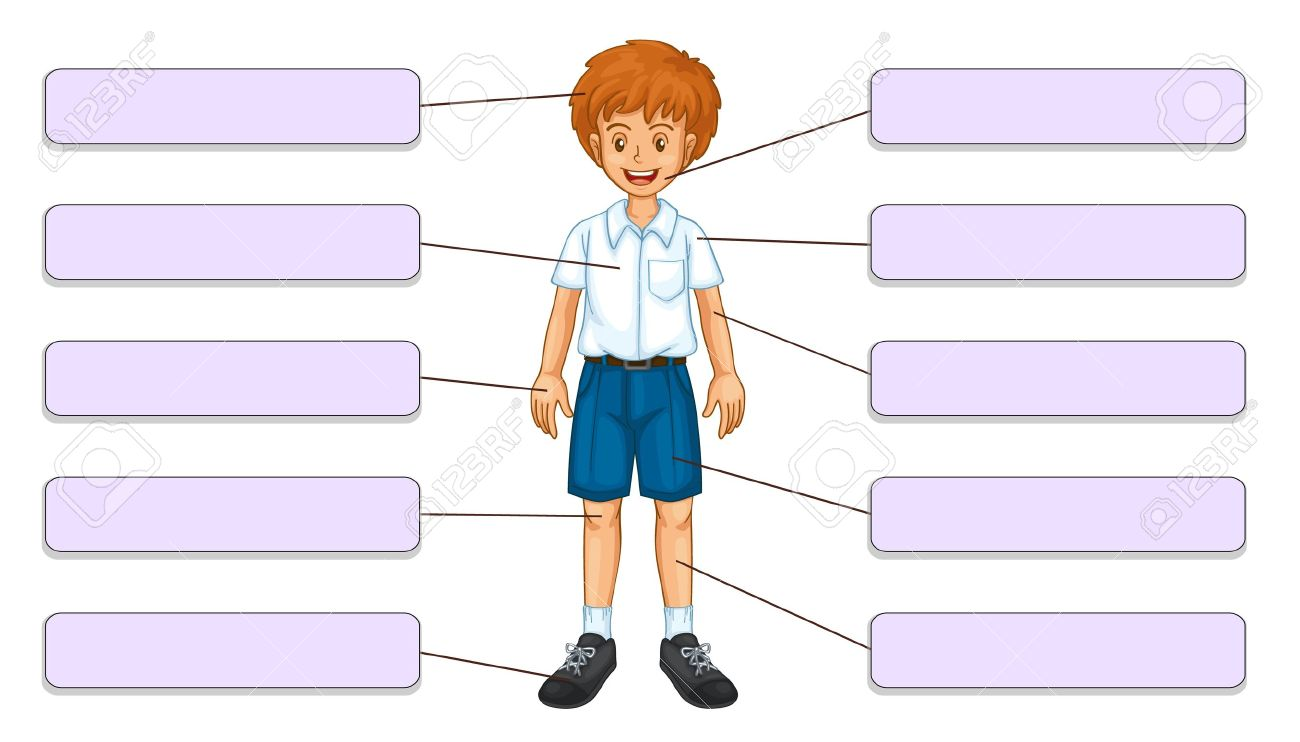 Body clipart labelling. Parts of the group