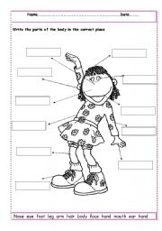 Classy label parts worksheet. Body clipart labelling