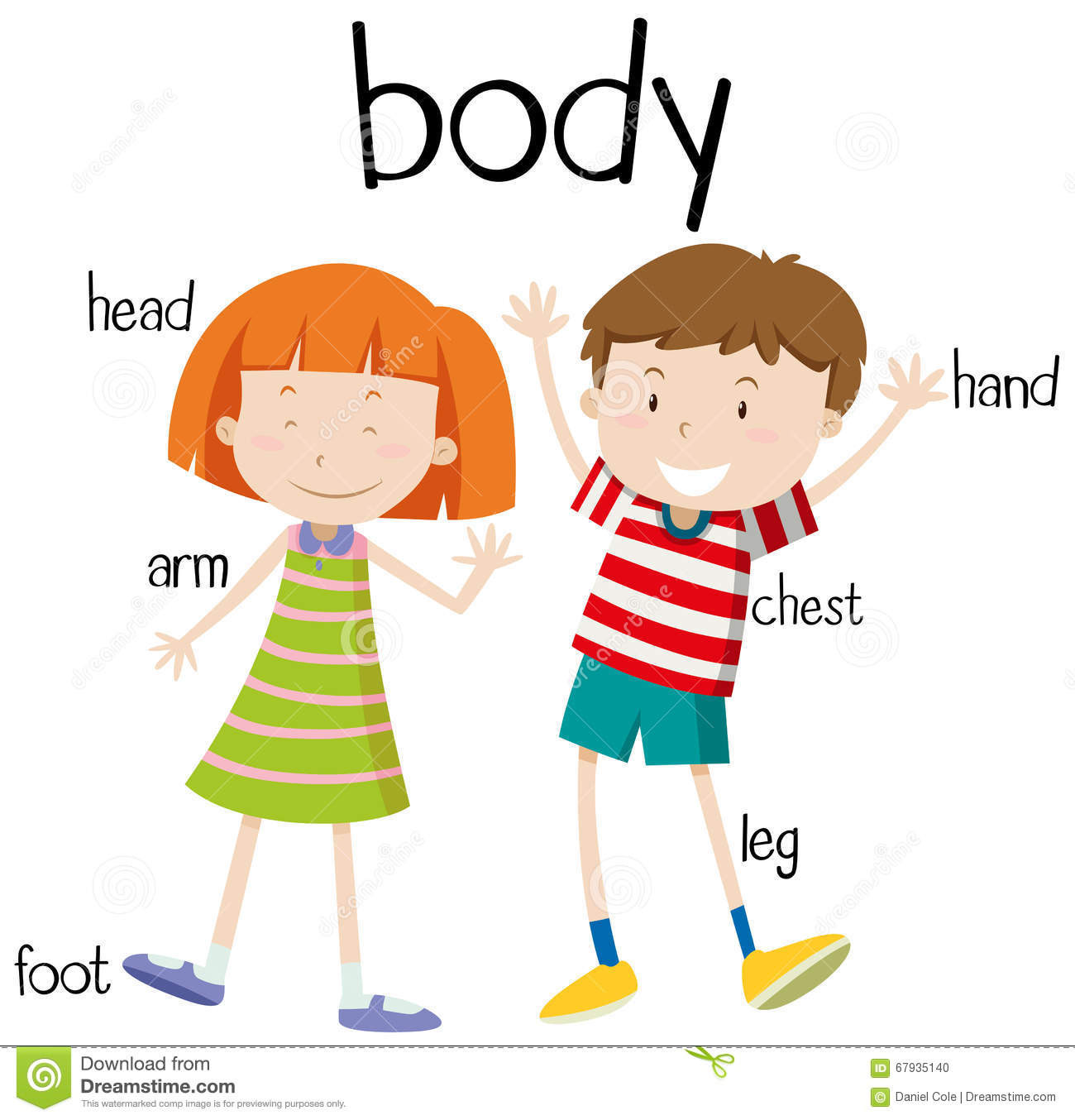 Illustration poster of the. Body clipart my body