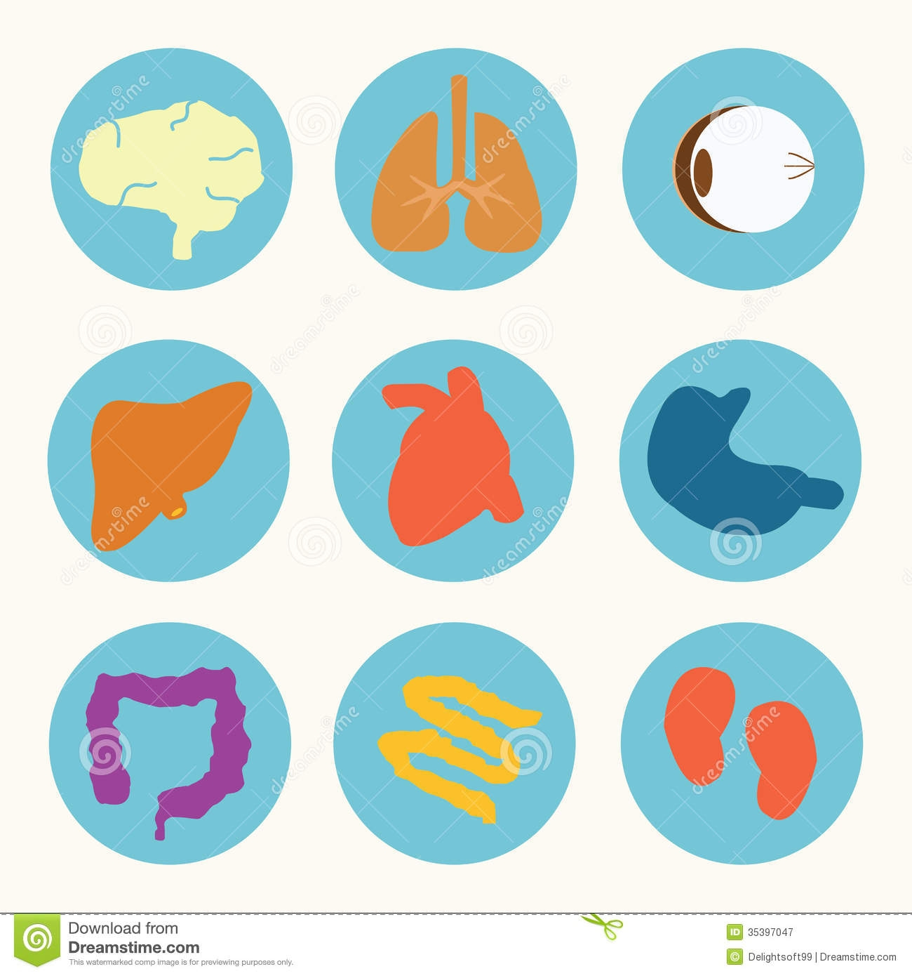 Clipartfest pertaining to . Body clipart organ