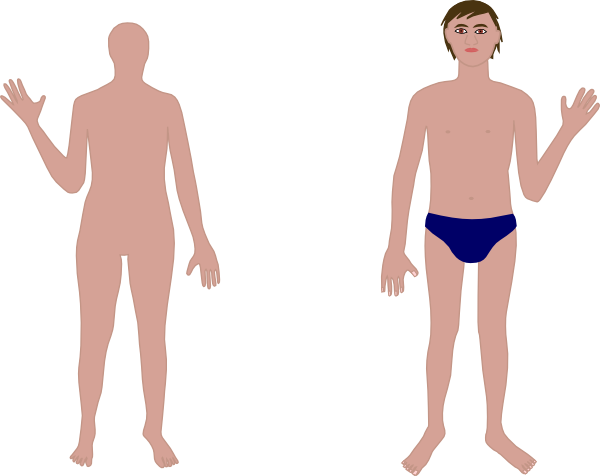 Body clipart person. Human clip art at