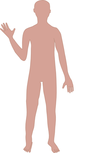 Free adult cliparts download. Body clipart person